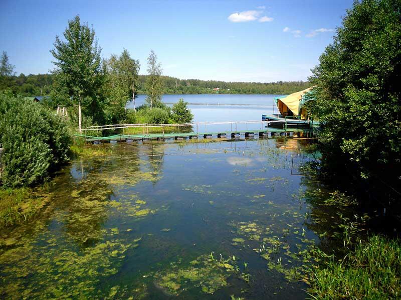 ТОП водоемов для отличной зимней рыбалки в Подмосковье