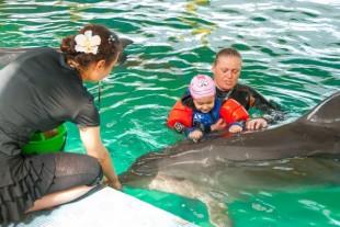 Официальный сайт дельфинотерапии в севастополе 2015 сайты для девочек где есть как сделать родителям приятное