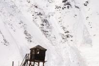 Altai-spring21