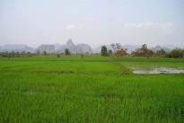 9 laos-451_960_720