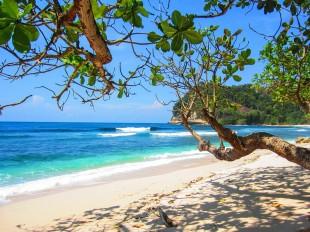 beach-2123440_960_720