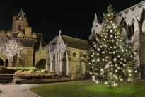 medium-DublinAtChristmas_Christchurch2_with_light