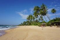 beach-2314336_640