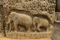 elephants-573776_640