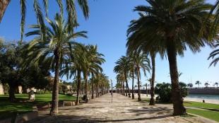 palma-de-mallorca-3794232_960_720