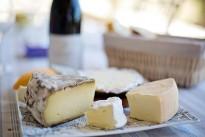 cheese-tray-1433504_640