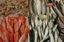fish-market-462199_640