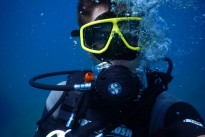 diving-1652869_640