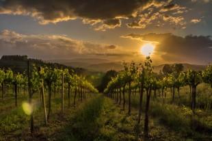 tuscany-2044334_960_720