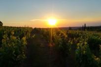 tuscany-2392571_960_720