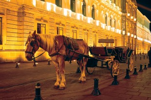 transport-evening-vehicle-horse-stall-carriage-1341888-pxhere.com