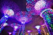 singapore-1896765_640